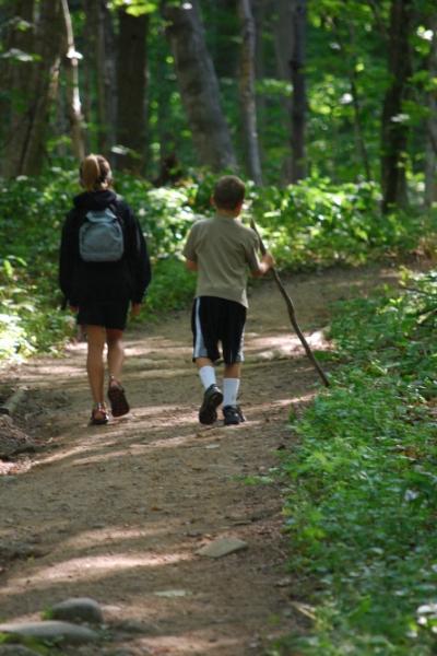 Dos niños haciendo senderismo se alejan de nuestra vista, de espaldas